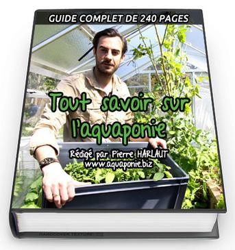 Formation aquaponie : Débuter la culture aquaponique | 3A : Actualités Aquacoles & Aquaponiques | Scoop.it