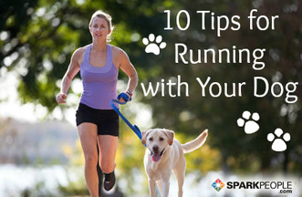 10 Tips for Running with Your Dog | One Step at a Time | Scoop.it