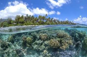 L'océan, grand absent de la Conférence de Paris | Océan et climat, un équilibre nécessaire | Scoop.it
