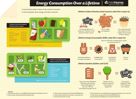 Energy Consumption Over a Lifetime | Infographics for English class | Scoop.it