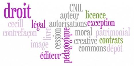 Module de formation gratuit : Le droit d'auteur et le droit à l'image - Cultureveille | Arts et FLE | Scoop.it