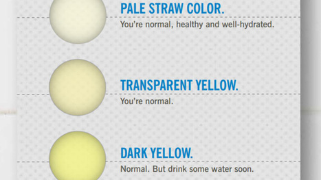 What the Color of Your Pee Says About Your Health | The Basic Life | Scoop.it
