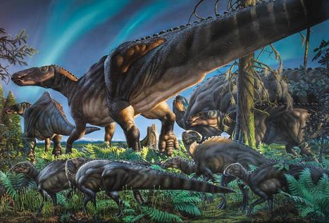 New hadrosaur species discovered on Alaska's North Slope | UnSpy - For Liberty! | Scoop.it