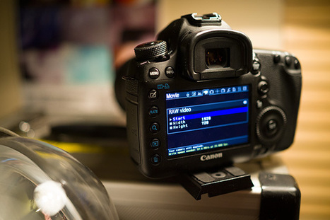 Easier 5D Mark III raw guide in 4 steps | EOSHD.com | Canon EOS 5D Mark III | Scoop.it