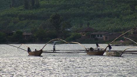 Le trésor du lac Kivu | Bien-être | Scoop.it