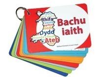 Canolfan Peniarth: Prifysgol Cymru Drindod Dewi Sant Canolfan Cyhoeddi- Adnoddau Iaith | Dysgu Cymraeg | Scoop.it