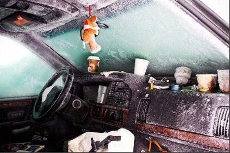 L'homme qui a réussi à survivre près de deux mois dans un véhicule enseveli sous la neige est un SDF. Sa résistance s'explique par un phénomène proche de l'hibernation. | Mais n'importe quoi ! | Scoop.it