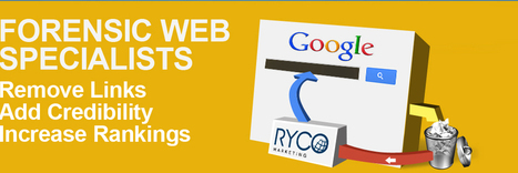 Get Best Forensics Web Analytics Services From RYCO Marketing | Ryco Marketing Updates | Scoop.it
