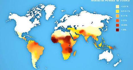 Les données mobiles, un atout dans la lutte contre le paludisme | L'Atelier: Disruptive innovation | IT | Scoop.it