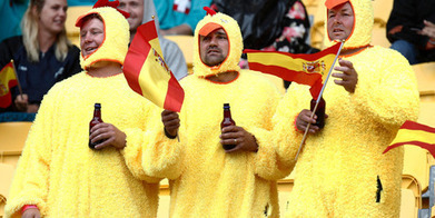 Sevens: More need to be done - police - Sport - NZ Herald News | Sociology Pe | Scoop.it