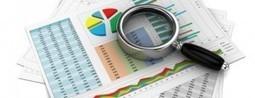 Tunisie: Cap sur le bulletin d'investissement du mois de Janvier 2013 | leskoop | Scoop.it