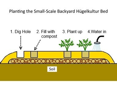 The small-scale Hugelkultur Bed Construction | Think Like a Permaculturist | Scoop.it