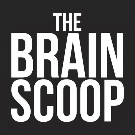 the brain scoop by Emily Graslie | STEM Education models and innovations with Gaming | Scoop.it