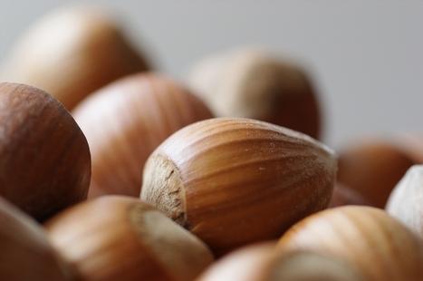 Health Benefits of Soaking Nuts and Seeds - Fitness Goop   Phytic acid   Scoop.it