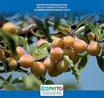 Pesticides : remise du rapport relatif à une nouvelle version du plan Ecophyto - Ministère du Développement durable   AGRONOMIE VEGETAL   Scoop.it