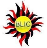 Black Light Indigenous Corporation | Facebook is opportunity | Scoop.it