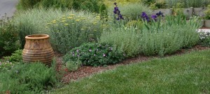 Do Lawns Have a Place in Sustainable Landscaping? | Habitat Restoration and Sustainable Gardening | Scoop.it