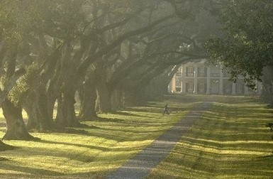 Just get up and GO! | Oak Alley Plantation: Things to see! | Scoop.it