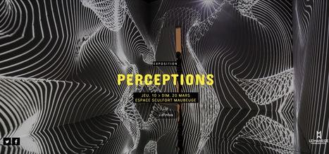 Exposition PERCEPTIONS | art actuel & technologies numériques / in #FESTIVAL VIA 16 /// #mediaart | Digital Creativity & Art | Scoop.it