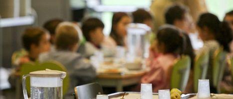 Notícias ao Minuto - Cantinas Sociais de Vila Franca de Xira fornecem 861 refeições diárias   Xira News   Scoop.it