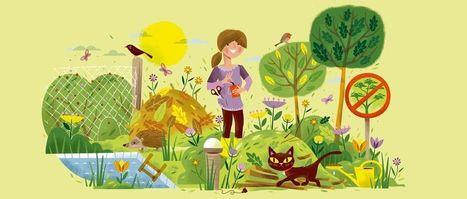 La biodiversité dans son jardin | Mes passions natures | Scoop.it