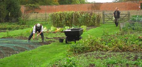 Avec le beau temps, vient le jardinage ! | Le-Deal, le blog de la consommation collaborative | Le-Deal, petites annonces gratuites entre particuliers | Scoop.it