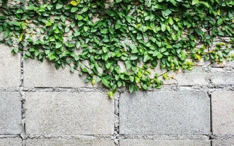 Eco-friendly concrete now mandatory in Dubai - Green Prophet | Concrete.Network | Scoop.it