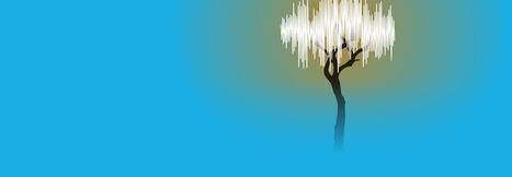 ARTS SONORES, NOCTURNE EN FORÊT - BACK TO THE TREES | DESARTSONNANTS - CRÉATION SONORE ET ENVIRONNEMENT - ENVIRONMENTAL SOUND ART - PAYSAGES ET ECOLOGIE SONORE | Scoop.it