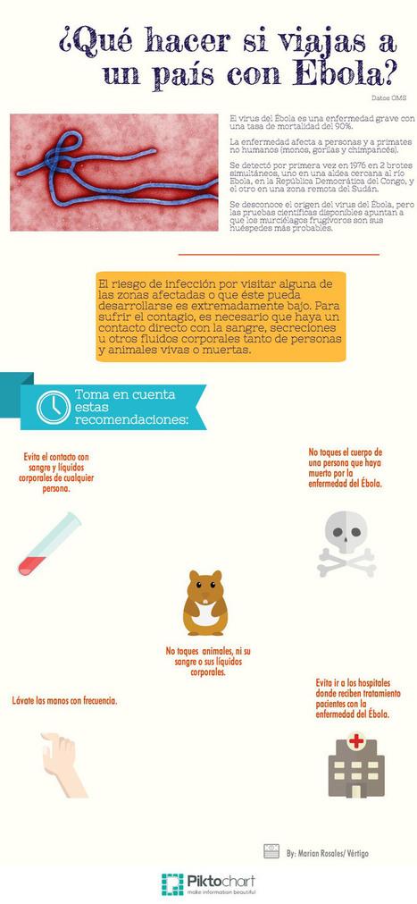 Recomendaciones para viajar a un país con ébola #infografia #health #tourism   Salud Publica   Scoop.it