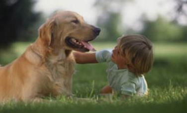 Teaching Kids Animal Compassion: Choosing the Right Pet is Key | Empathy and Animals | Scoop.it