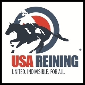 WOOOT WOOOOOTTT!!  AQHA World Championship Show: Para-Reining | Horse and Rider Awareness | Scoop.it