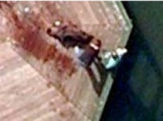 Did Google Maps capture a grisly murder? | The Netherlands | Scoop.it