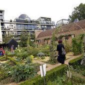 Les pesticides interdits dans les espaces verts et les jardins | Nouveaux paradigmes | Scoop.it