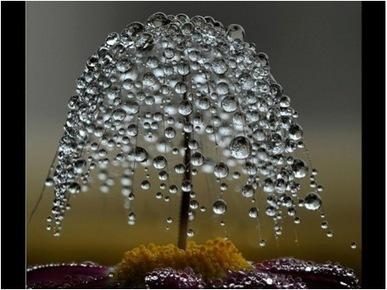 Outils de nettoyage - MERCI, JE T'AIME | developpement perso et spiritualité | Scoop.it