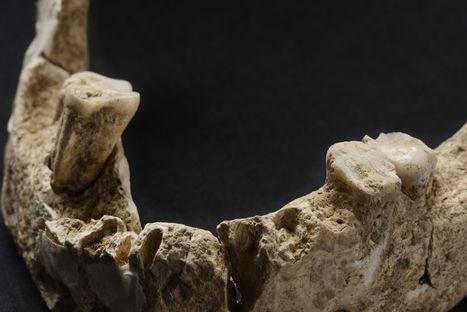 FRANCE : Sur les traces des premiers parisiens | World Neolithic | Scoop.it