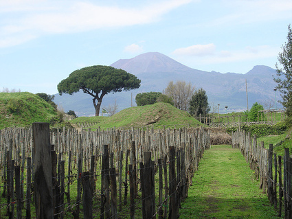 How Pompeii Perished | Rosetta Stones, Scientific American Blog Network | Pre-Modern Africa, the Middle East - and Beyond | Scoop.it