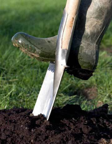 5 Frugal Fall Gardening Tips | Thrifty Sues Frugal Living | Scoop.it