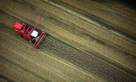 Food prices expected to rise after second wettest summer on record | UK Climate Change | Scoop.it