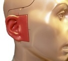 Study Reveals Potential Breakthrough in Hearing Technology | Technology | Scoop.it
