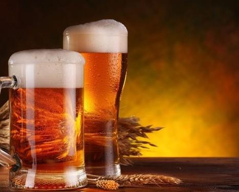 Beer Market Insights Czech Republic   Online Market Research   Scoop.it