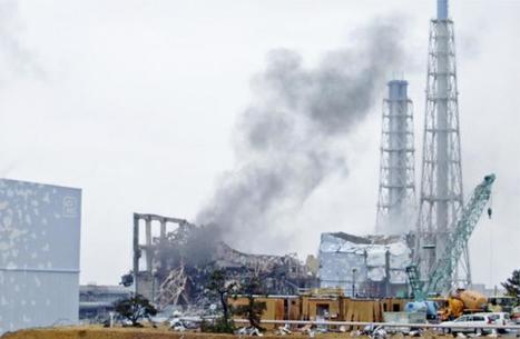 Survol des problèmes rencontrés par les Japonais suite à Fukushima   Japan Tsunami   Scoop.it