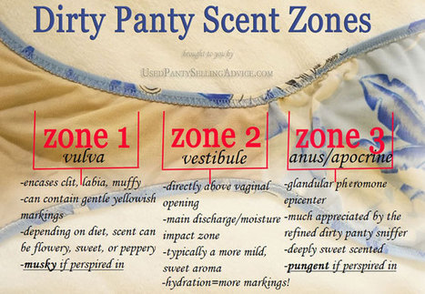 Used Panty Scent Zones; an Education/Communication Tool | Sex Work | Scoop.it