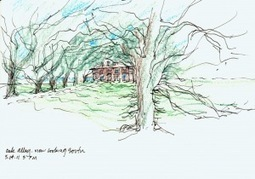 Oak Alley Sketch | Oak Alley Plantation: Things to see! | Scoop.it