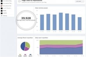 Analytics Facebook : Tigerlily lance Insights | Digital and web strategies | Scoop.it