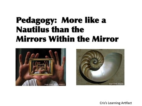 The Nautilus Pedagogy | Virtually Foolproof | Adaptive Learning and Metadata | Scoop.it