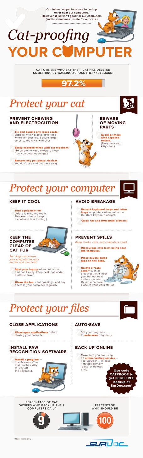 How to Cat-Proof Your Computer [[INFOGRAPHIC] | Digital-News on Scoop.it today | Scoop.it