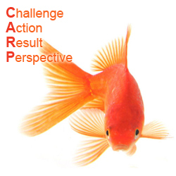 How to write a good success story: CARP Model | Just Story It! Biz Storytelling | Scoop.it