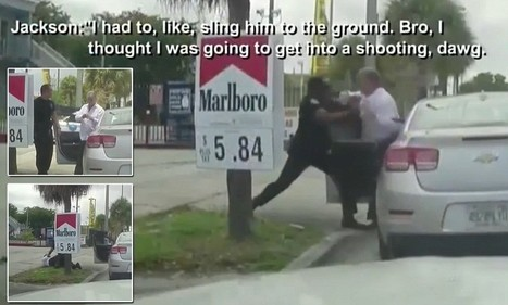 Cop suspended for brawl with combative officer 'trying to pull rank'   Around The Net   Scoop.it