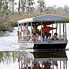 South Mississippi's natural beauty a growing draw for tourists | News | The Sun Herald | Leading for Nature | Scoop.it