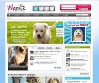 Animal Services : santé animale et conseils sur les animaux domestiques   Métiers avec les animaux et la nature   Scoop.it